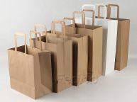 Brown Flat Handle Kraft Paper Bags 100pcs-009357